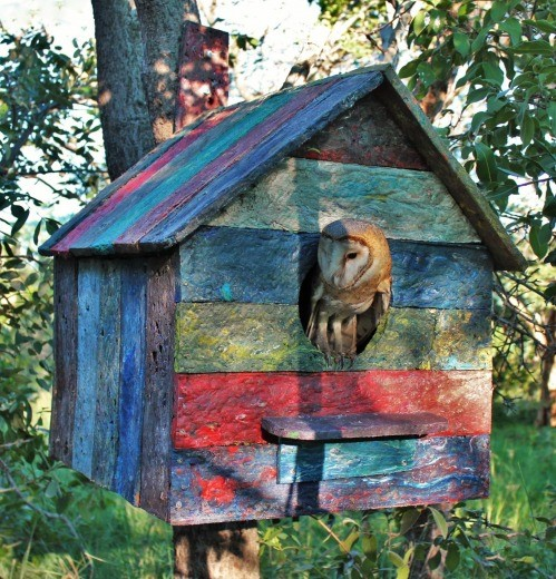 Owl House Kingsmead College